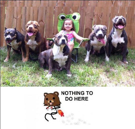 Nothing_to_do_here - Nothing to pedobear