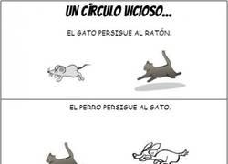 Enlace a El círculo vicioso