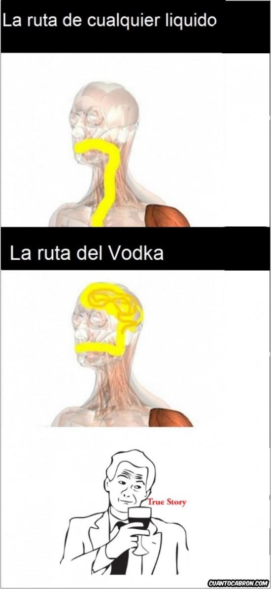 agua,liquidos,ruta,true story meme,vodka