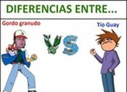 Enlace a Diferencias entre Gordo Granudo y Tío Guay