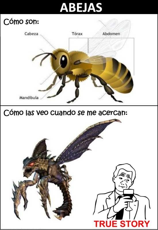 Otros - Las abejas