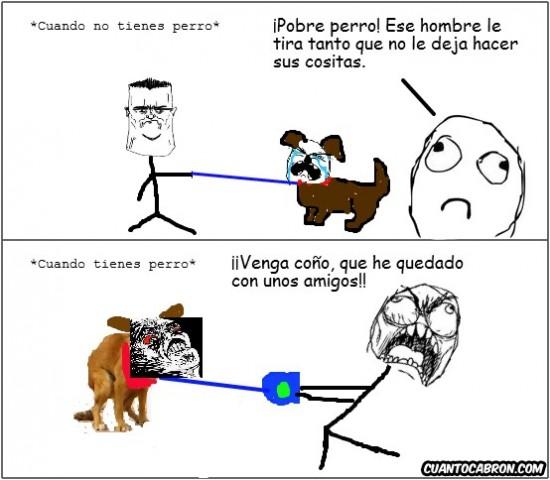 Mix - Pobre perro...