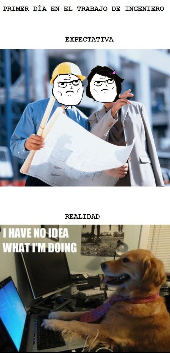 expectativa,i have no idea,ingeniero,perro,realidad