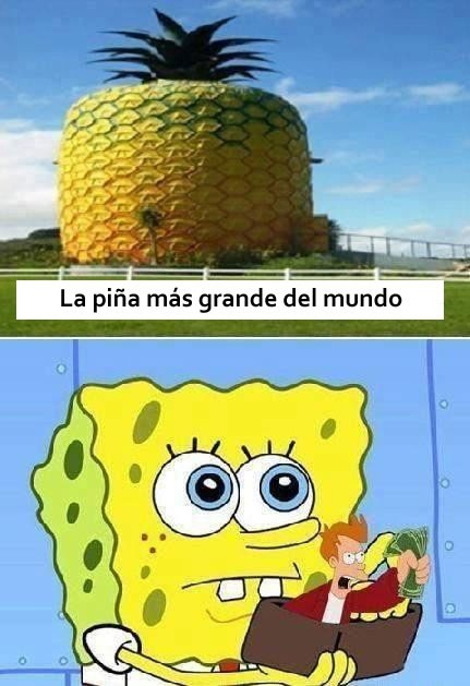 bob esponja,casa,fry,gigante,money,piña,shut up and take my money