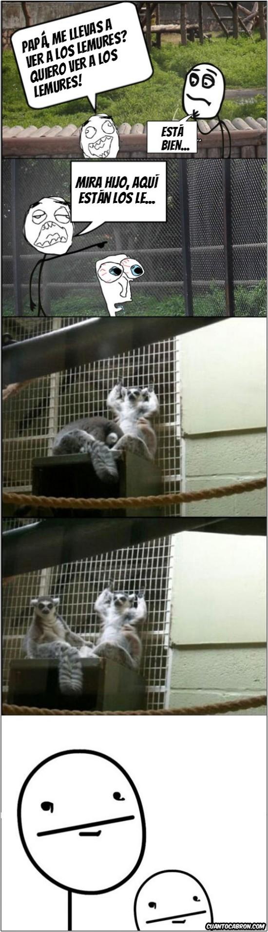 hijo,lemures,molestar,padre,poker face,zoo