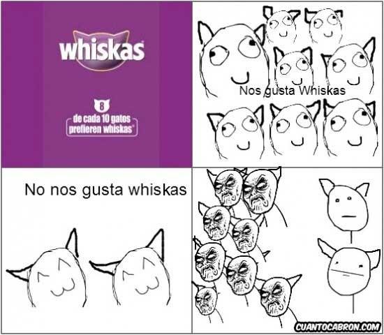 gatos,infinito desprecio,whiskas