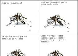 Enlace a El mosquito troll cambia de trabajo