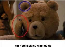 Enlace a Ted es gilipollas