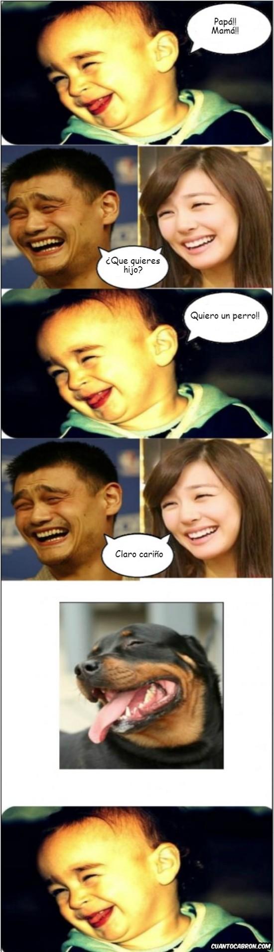 esposa,hijo,ming,perro,yao,yao ming
