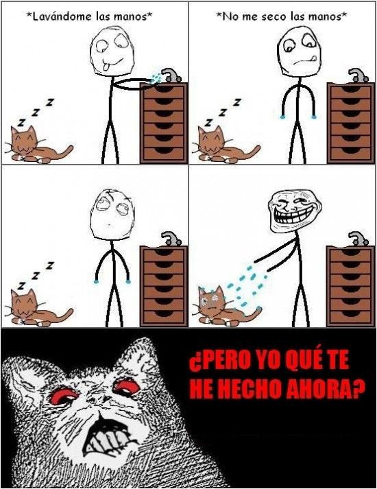 Inglip - La tortura de los gatos