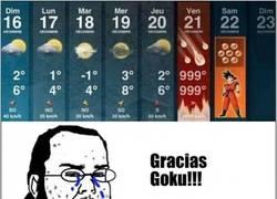 Enlace a ¡Gracias Goku!