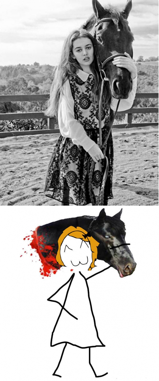 caballo,cabeza,foto,humor negro,posar,sádico