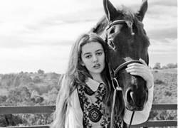 Enlace a Qué precioso caballo
