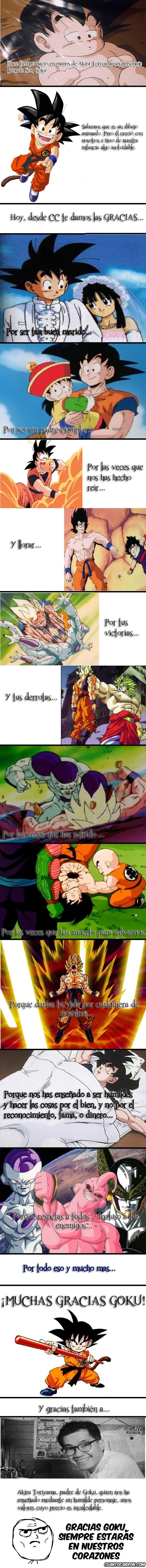 Otros - Goku, más que un dibujo animado