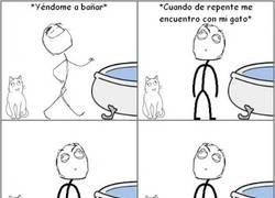 Enlace a El gato y la bañera