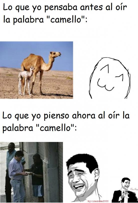 ahora,antes,camello,palabra,pensar,true story,yao ming