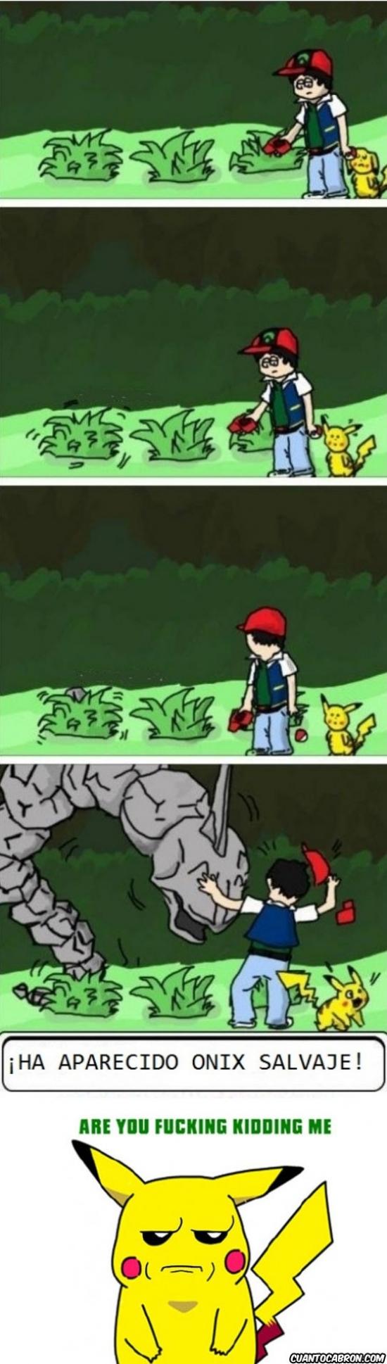 are you fucking kidding me,ash,hierba alta,imposible,logica,onix,onyx,pikachu,pokemon,salvaje