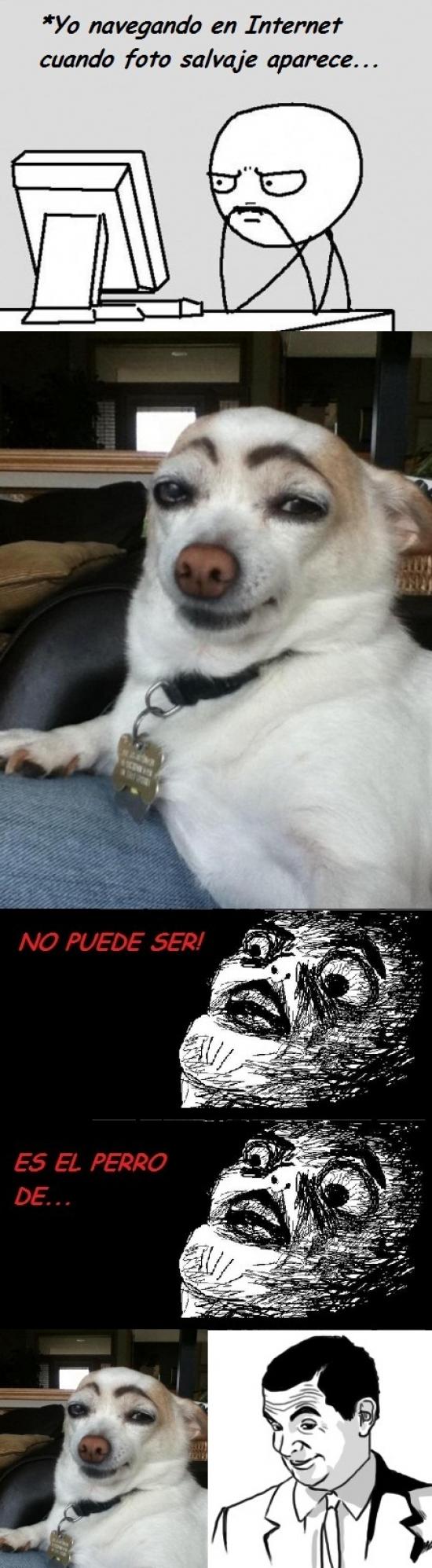 Otros - El perro de Mr. Bean