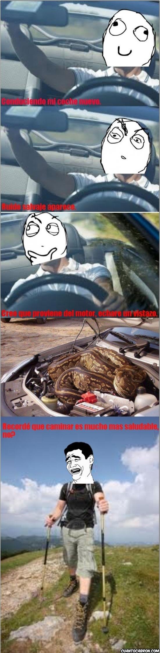 Yao - Tal vez deba revisar el motor...