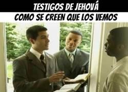 Enlace a Testigos de Jehová, expectativa y realidad