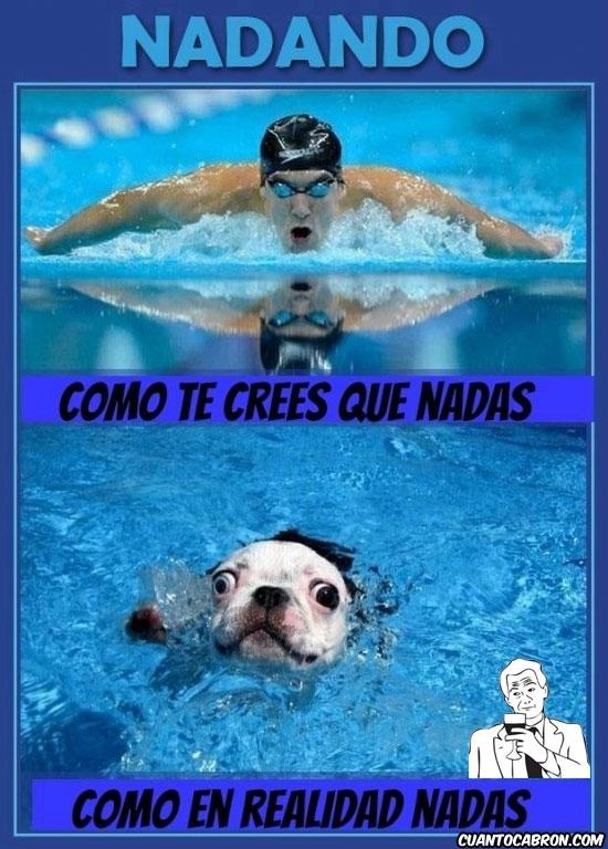 Otros - Y así es la natación en realidad
