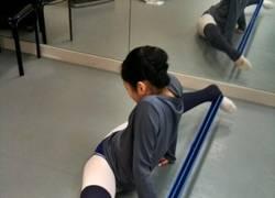 Enlace a Dulce flexibilidad