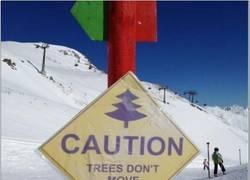 Enlace a Menos mal que está la señal para avisar