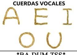 Enlace a Cuerdas vocales
