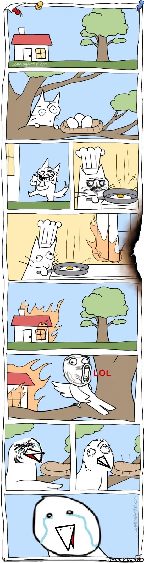 casa,gato,huevos,incendio,karma,Me gusta,pajaro,Poker Face,Trollface