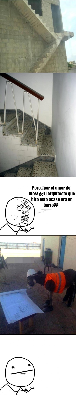 arquitecto,burro,escaleras,fail,lol,mal,y u no