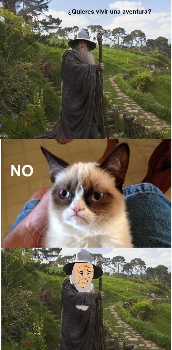 el Hobbit,Gandalf,gato gruñon,Grumpy Cat