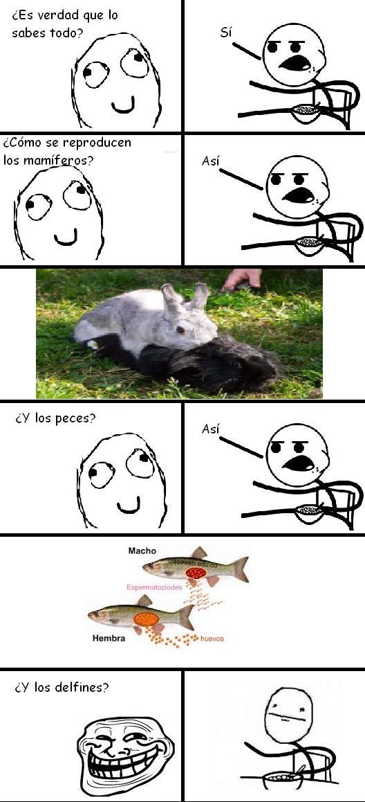 Cereal_guy - ¿Como se reproducen los delfines?