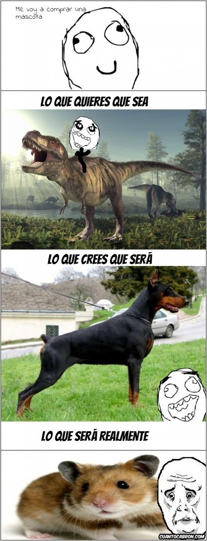Okay - ¡Quiero un dinosaurio de mascota!