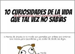 Enlace a Curiosidades de la vida