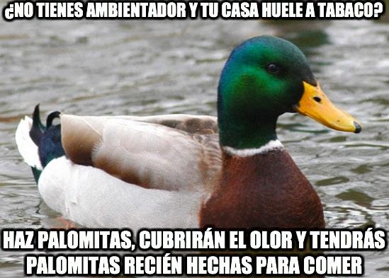 Pato_consejero - El pato consejero, soluciones reales que no habías pensado para los problemas cotidianos