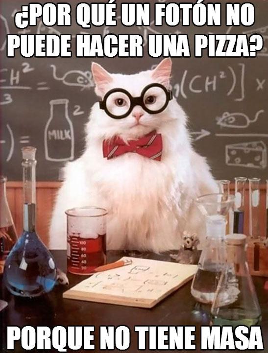 chiste,ciencia,foton,gato quimico,masa,pizza