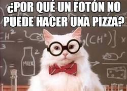 Enlace a El gato químico, ¿quién dice que la ciencia no puede ser divertida?