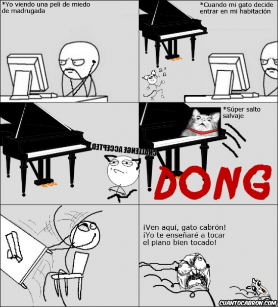 Ffffuuuuuuuuuu - Tener un gato y un piano no es una buena combinación