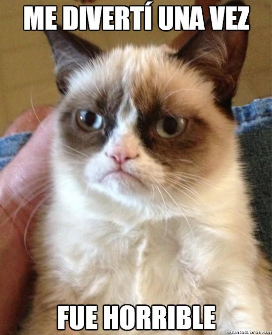 Grumpy_cat - Me divertí una vez