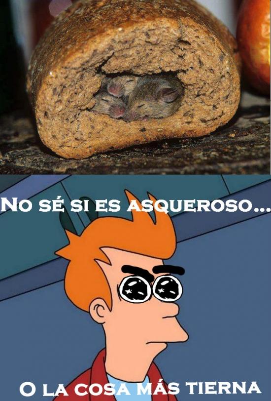 Fry - ¡Joder, qué dilema!