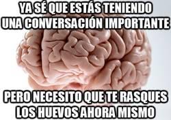 Enlace a El cerebro tiene sus prioridades, no las cuestiones y obedece
