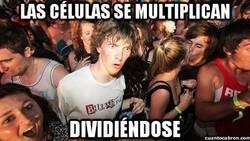 Enlace a La contradictoria forma de multiplicación celular