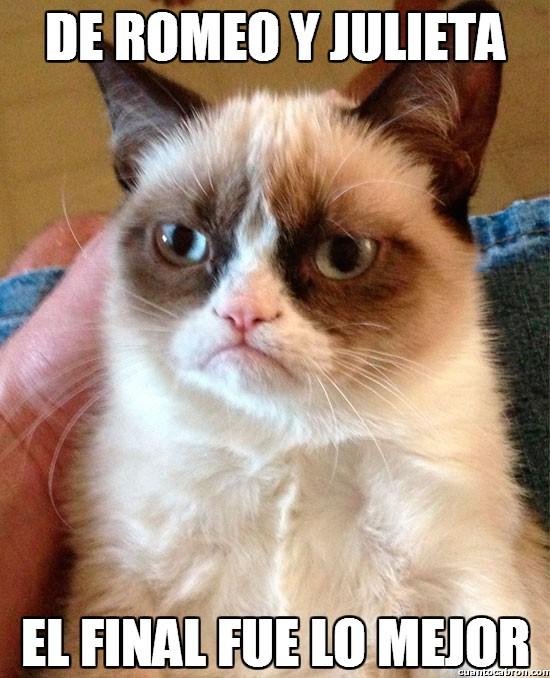 Grumpy_cat - Estaba claro que la parte del romance no iba a ser su preferida