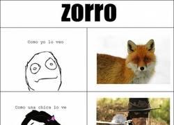 Enlace a Zorro, según se mire