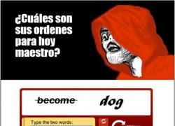Enlace a Become a dog