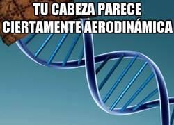 Enlace a Estropear el aerodinamismo del cuerpo es la especialidad del ADN troll