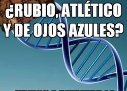 Enlace a ¿Rubio, atlético y de ojos azules?