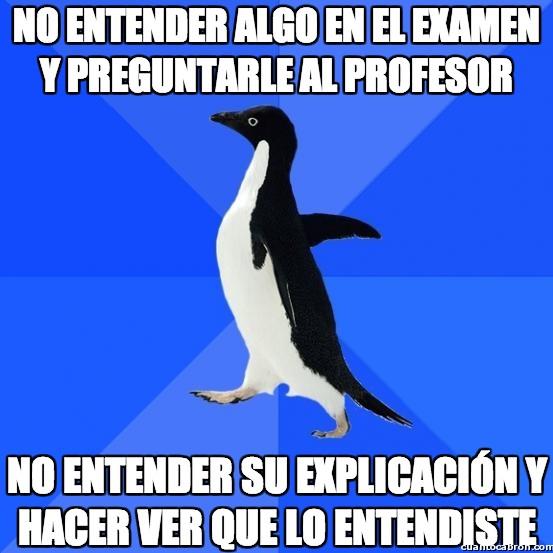 Awkward_penguin - No entender algo en el examen y preguntarle al profesor