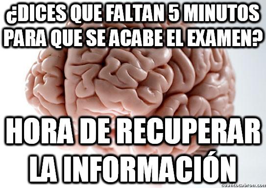 Cerebro_troll - ¡Y a correr respondiendo todo!