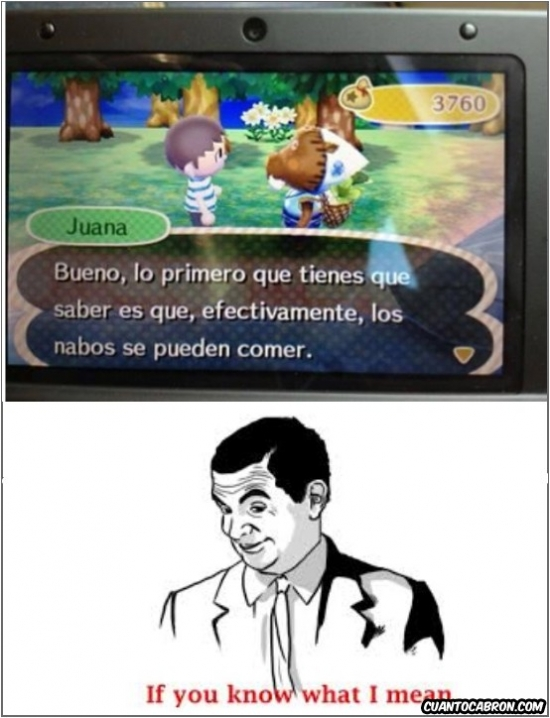 animal crossing,comer,if you know what i mean,juego,mr bean,nabos,nintendo 3ds